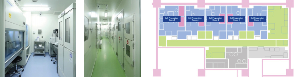 Five cell preparation rooms