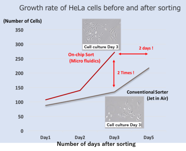 Growth rate of HeLa before and after sorting