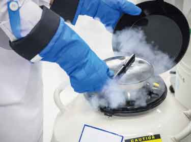 A promising new antifreeze for safer cryopreservation of cells