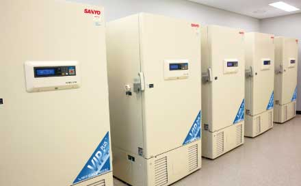 Medical center | TwinGuard ULT Freezers and CO2 icubators