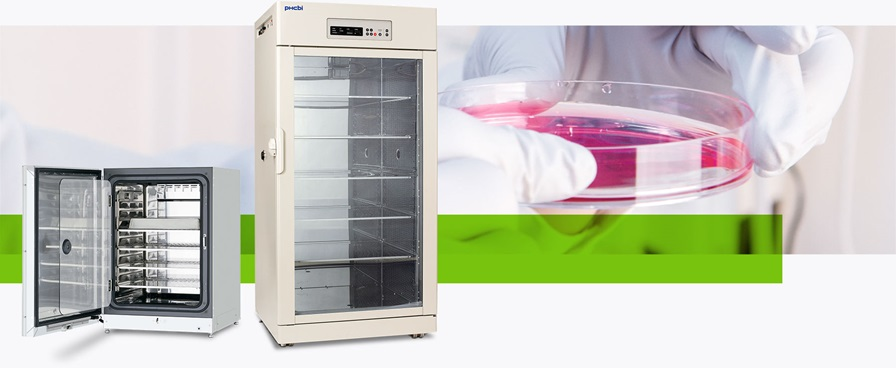 Cell Culture Equipment and Incubators